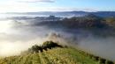 Potzinger Sauvignon Blanc Trockenbeerenauslese 2017 Demi 0,375 l