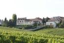 Lancelot-Pienne Champagne Blanc de Blancs Instant Present Brut NV